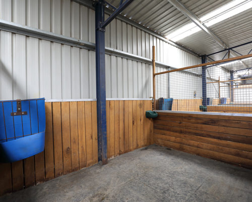 5 Rubber Floored Stables with Automatic Water